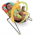 fisher-price-v4552 baby zoo bouncer